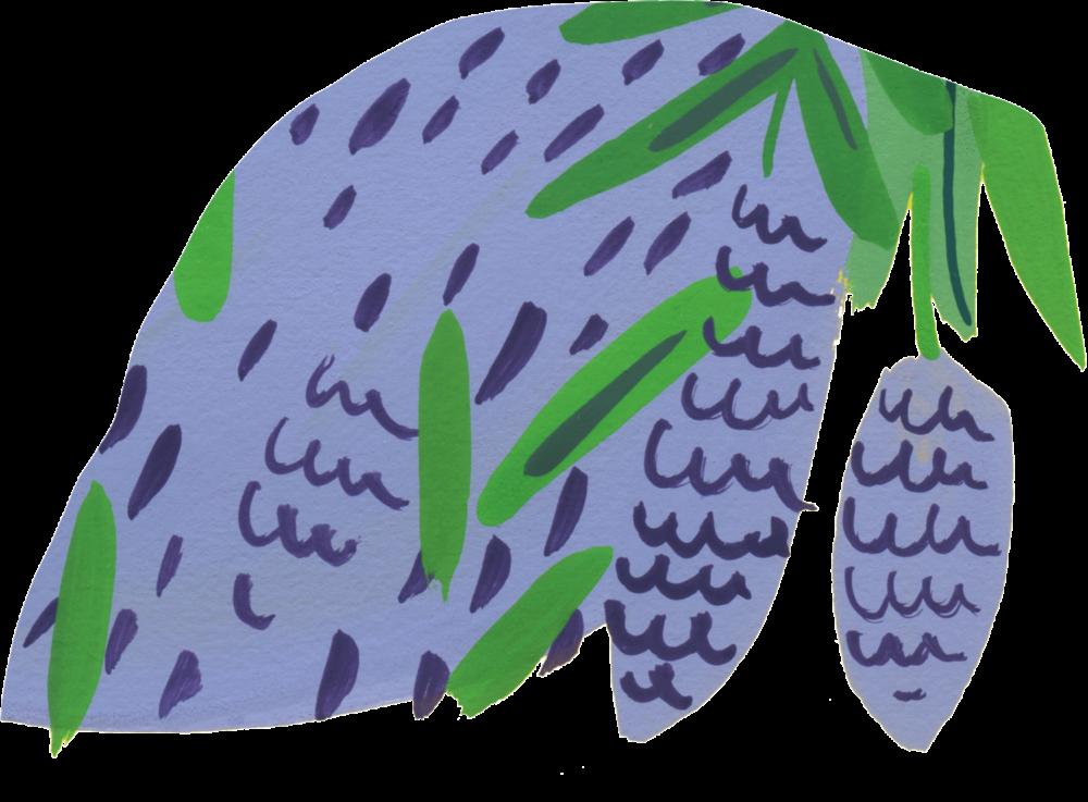 lavande