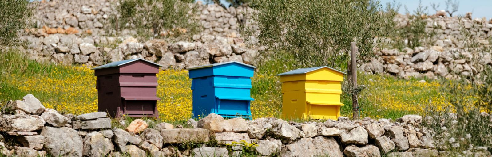 trio de ruches